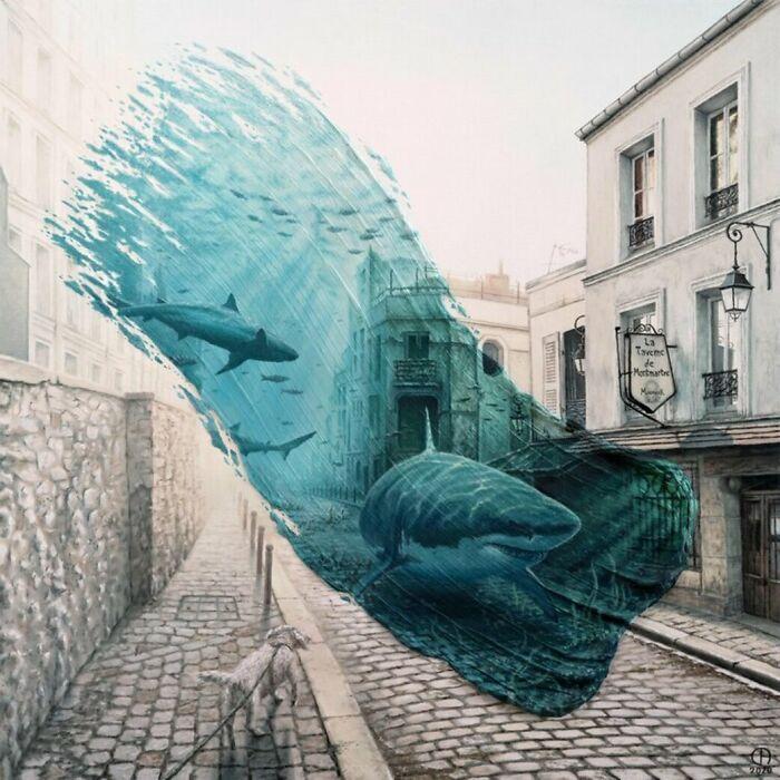 Sharks In Montmartre