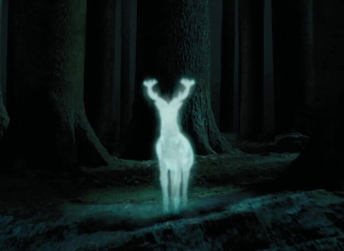 In The Movies, Nobody Ever Tells Harry That His Dad Could Turn Into A Stag