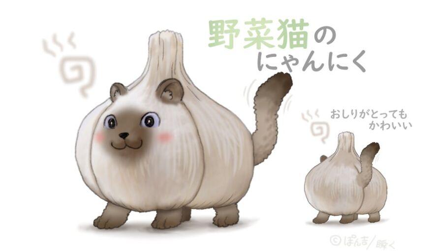Garlic Cat