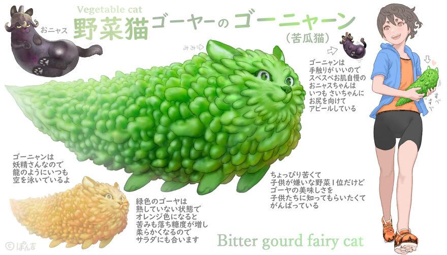 Bitter Gourd Cat
