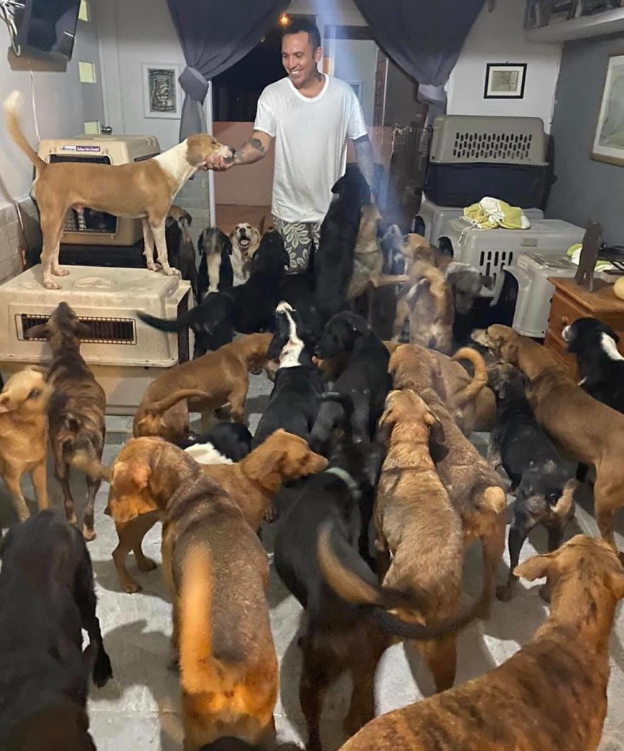 Man Brings 300 Stray Animals To His Home, Protects Them From Hurricane Delta