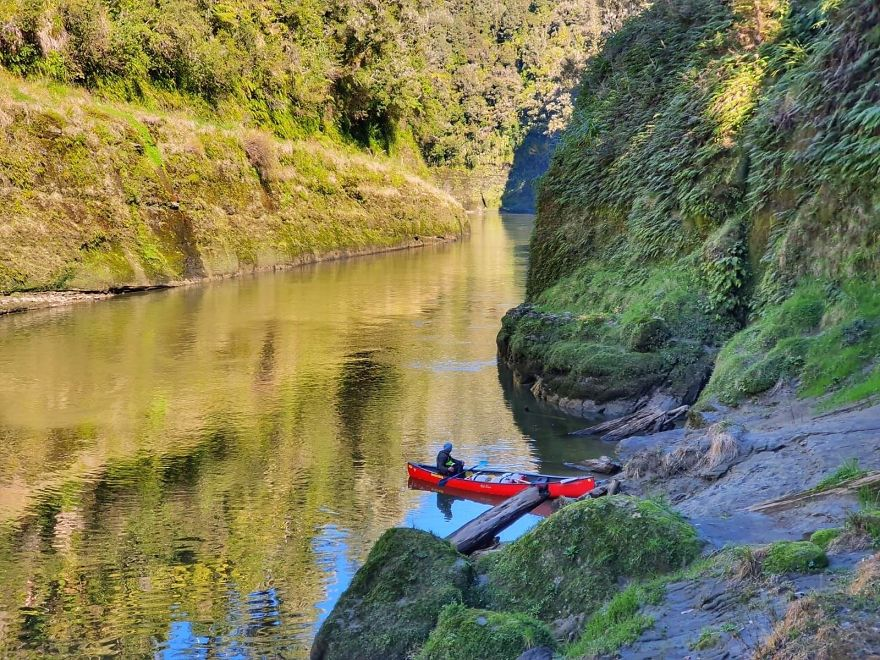 After Getting Stranded In New Zealand, We Determined To Stroll, Cycle, And Canoe The Size Of The Nation And We Are Midway Via (32 Pics)