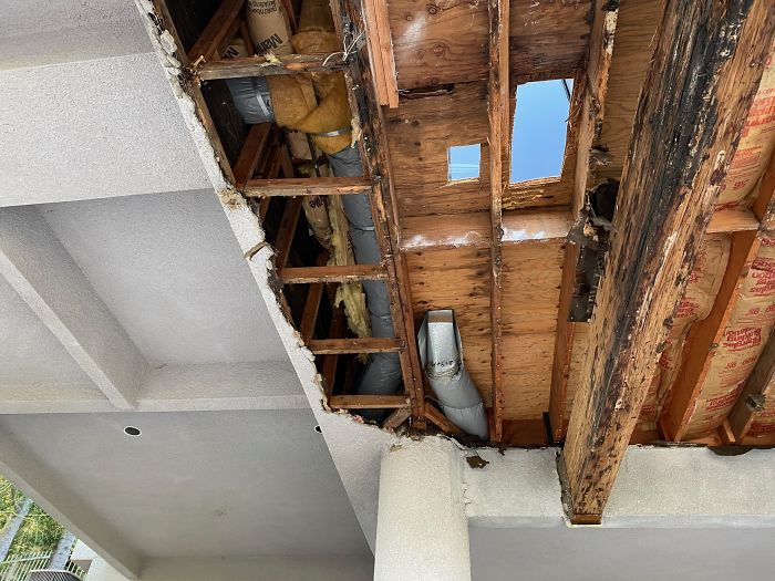 Bizarre-Structural-Inspections
