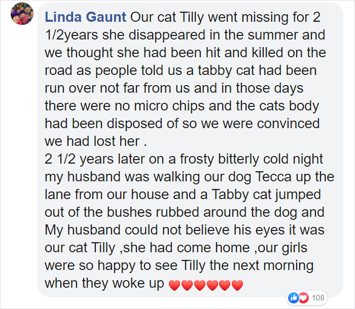 Security Guard Fed A Seemingly Stray Cat For Years, Later Found Out She Was Actually 60 Miles Away From Home So He Returned Her