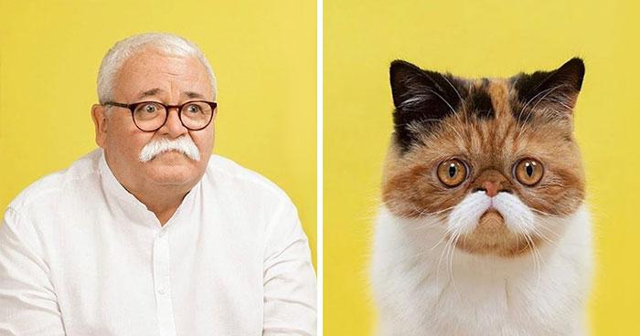 Este fotógrafo retrata a gatos y humanos que son sus dobles (17 fotos)
