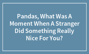 Pandas, What Was A Moment When A Stranger Did Something Really Nice For You?