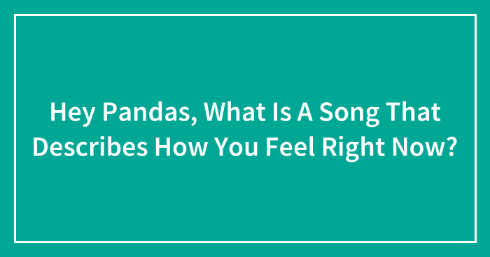 Hey Pandas, What Is A Song That Describes How You Feel Right Now? (Closed)