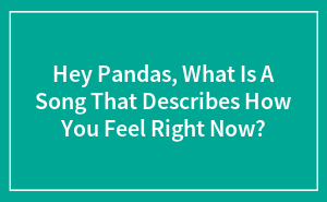 Hey Pandas, What Is A Song That Describes How You Feel Right Now?