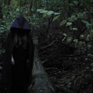 Damsel in the Dark