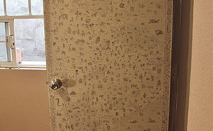 I Turned My Door Into An Antique Medieval Map With Monsters And Supernatural Creatures (13 Pics)