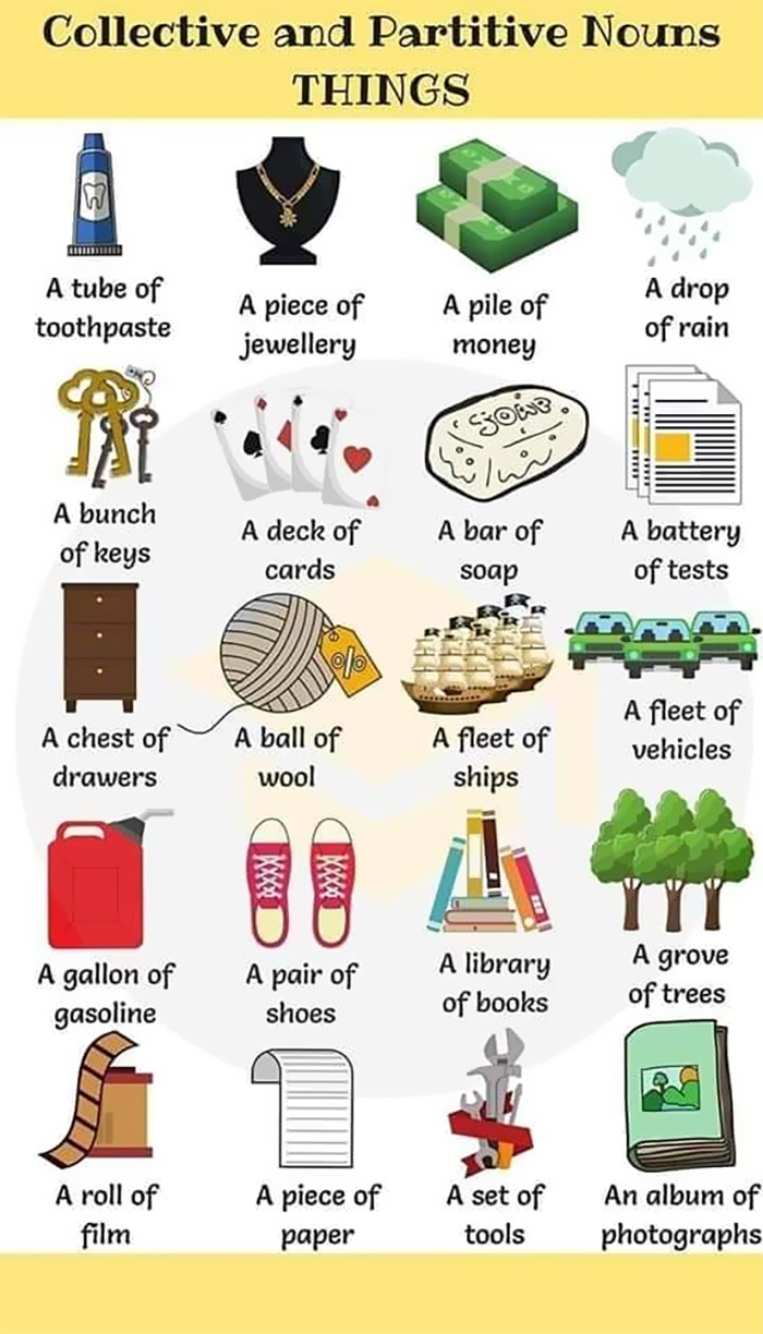 Collective and partitive nouns