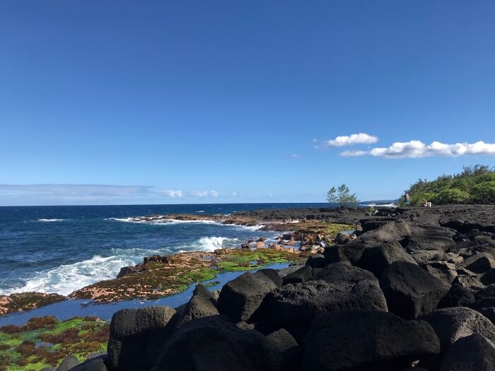 'End Of The Earth', Hawaii Island. Waves, Sea Spray, Turtles, & When Lucky Whales. Pure Peace.