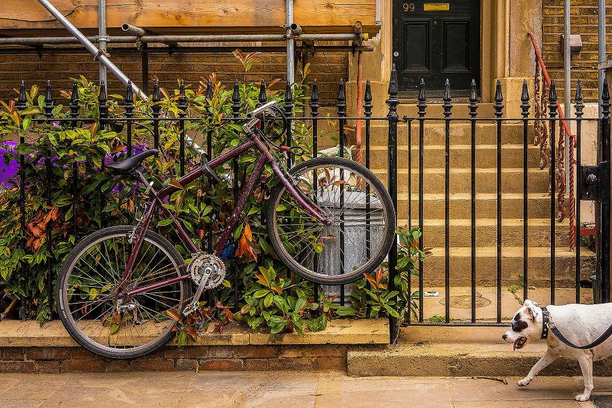 Bike V Woofer