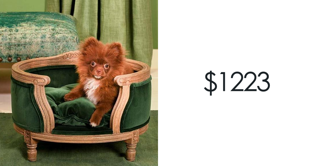 Picture of: 20 Luxury Furniture For Cats And Dogs That Costs More Than You Would Spend On Your Own Bed Bored Panda