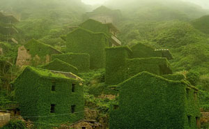 50 Veces que la Naturaleza le ganó terreno la civilización (Nuevas imágenes)