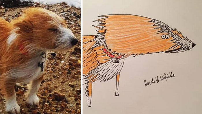 Man Who's Never Drawn In His Life Does Crappy Pet Portraits For Charity And Raises Over £13.6k (30 New Pics)