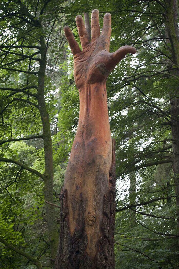 tree-hand-50ft-wales-sculpture-simon-oro