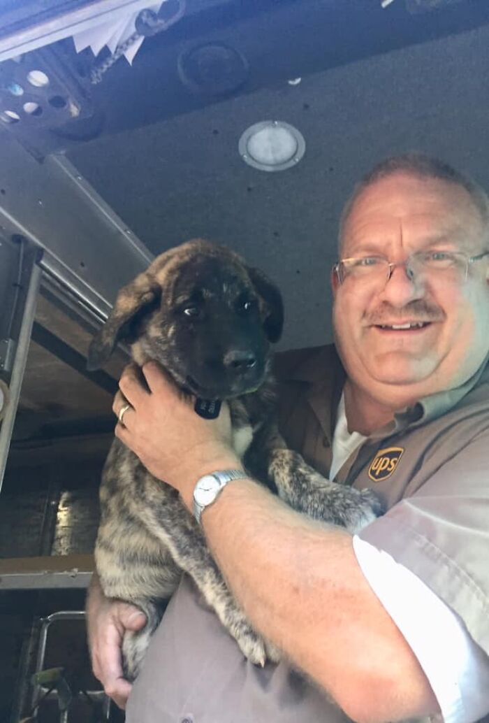 UPS-Delivery-Driver-Dogs-Scott-Hodges