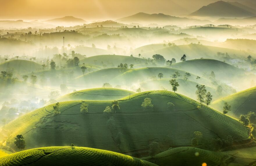 Weather Photographer Of The Year 2020: 2nd Place 'Tea Hills' By Vu Trung Huan