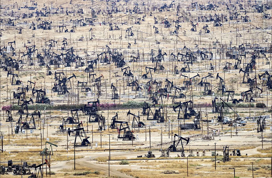 "Wildlife Photojournalism Highly Commended: ""The Price Of Oil"" By Andrew S Wright"