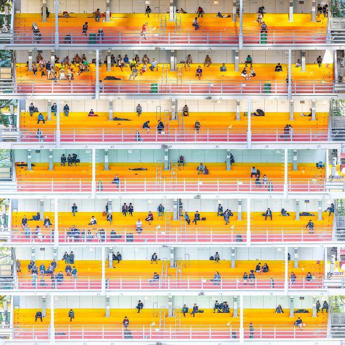Ciudad de partituras (1º en Bellas Artes y collage)