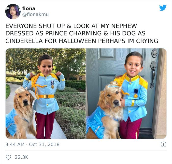 El príncipe Encantador y Cenicienta