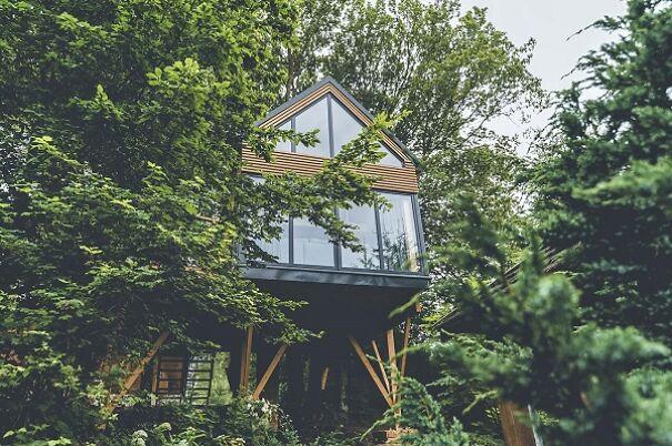 Treehouse 'Breath' (Poland)