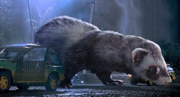 The same hilarious pictures from the movie were recently shared on the internet where the Dinosaurs were replaced with Ferrets