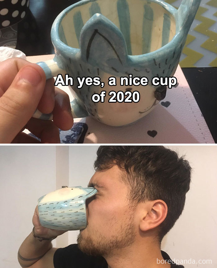 If-2020-Was-Meme-Joke