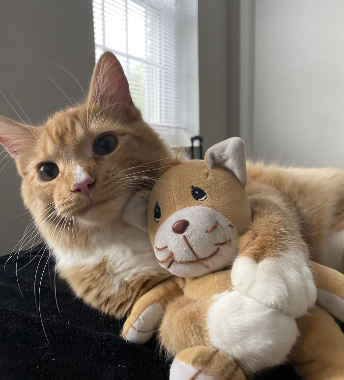 Charlie's Favorite Toy Is One That Looks Just Like Him