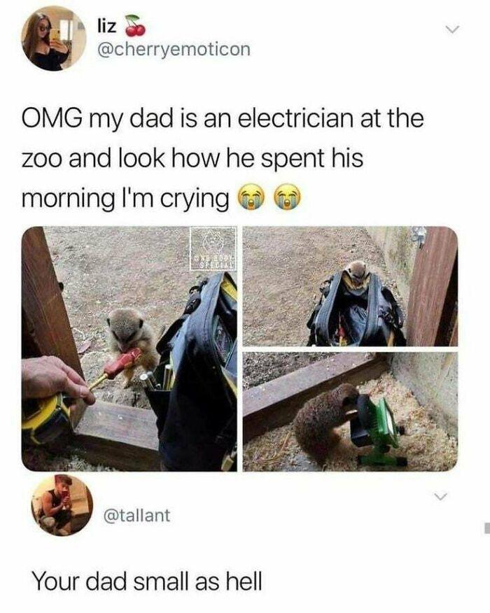 Very Shmol Dad