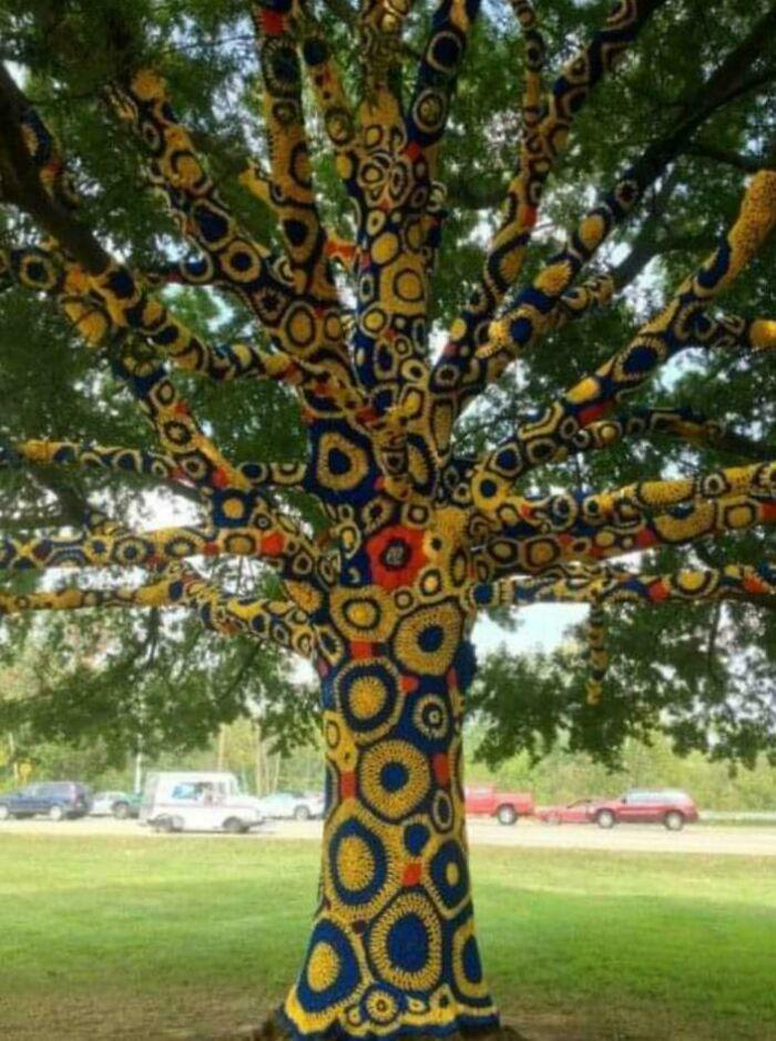 Ganchillo para árboles en Virginia occidental