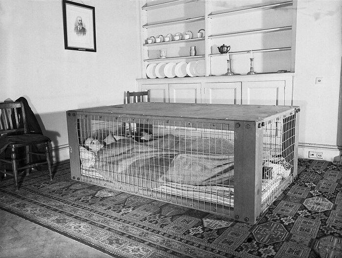 """Pareja británica durmiendo en un """"refugio Morrison"""" por si se les caía la casa durante los bombardeos de la 2ª Guerra Mundial"""