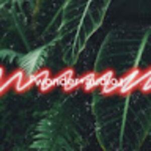 『wonder・audio』
