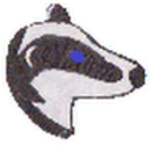 helen badger