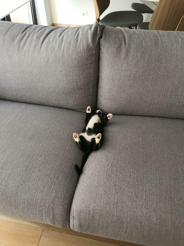 An Interesting Sleeping Position