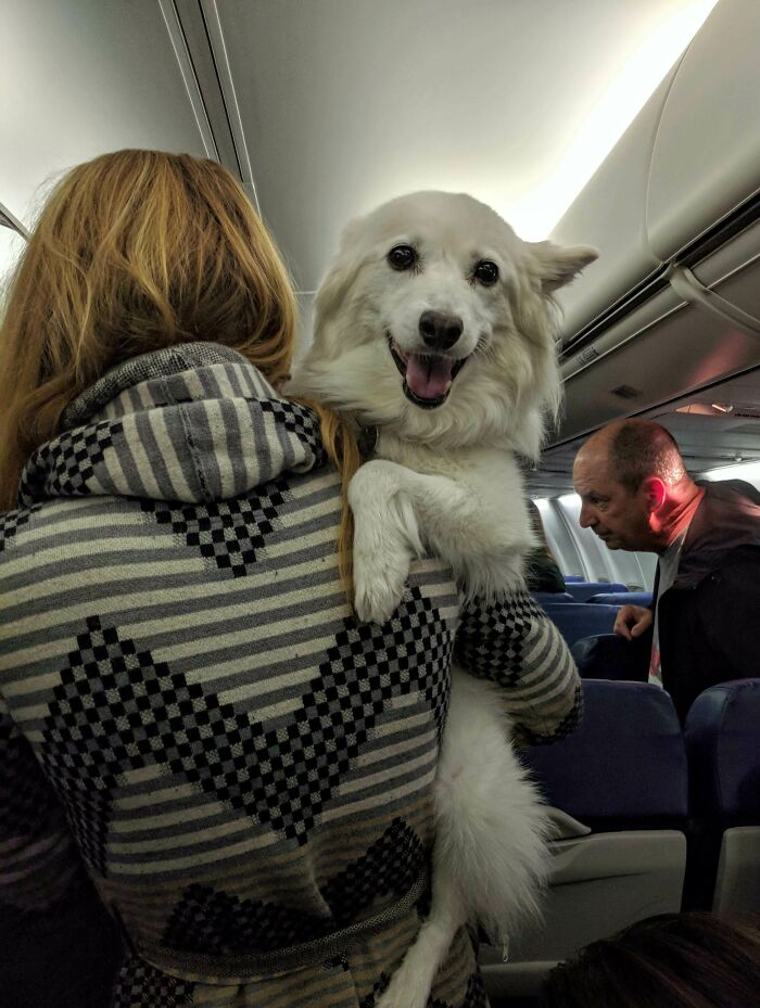 I Asked To Be Seated Next To The Cutest Guy On The Plane