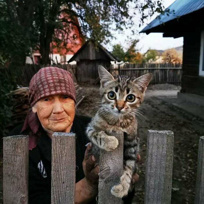A Rural Cat