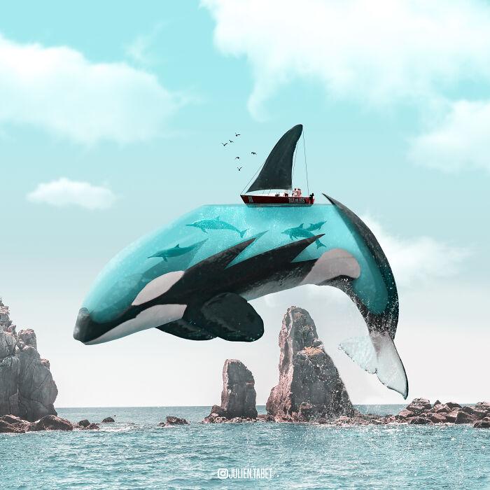 Orca acuática