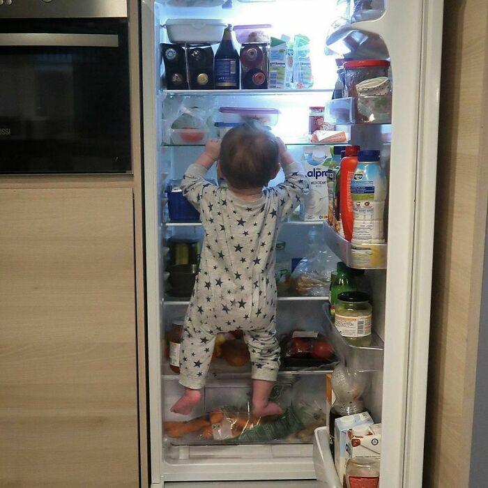 ¿Dónde está mi desayuno?