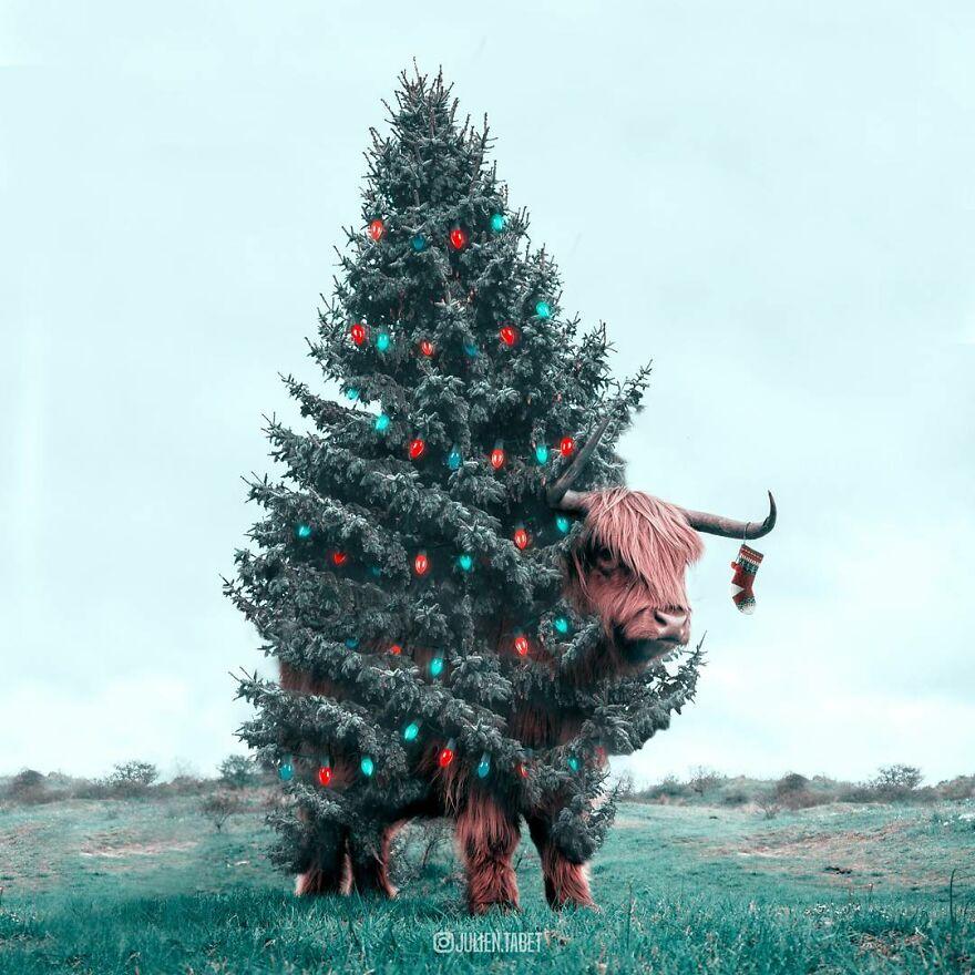 Christmas Yak