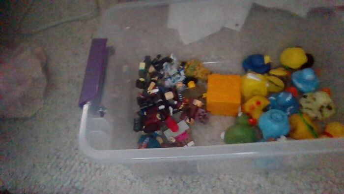 Rubber Ducks And Roblox Figures, I Haven't Added To It Much Yet Though....
