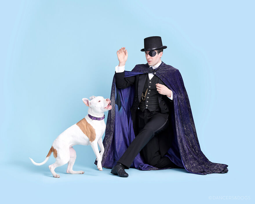Project Shows Dancers In A Beautiful Photoshoot With Dogs And Cats For Adoption