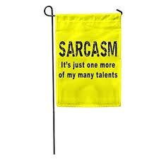 Sarcasm-5fbd31a4b8ea9.jpg