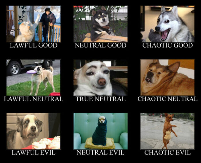 Lawful, Neutral And Chaotic