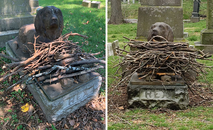 People Are Leaving Sticks At A Cemetery To Pay Tribute To This Dog Who Died 100 Years Ago