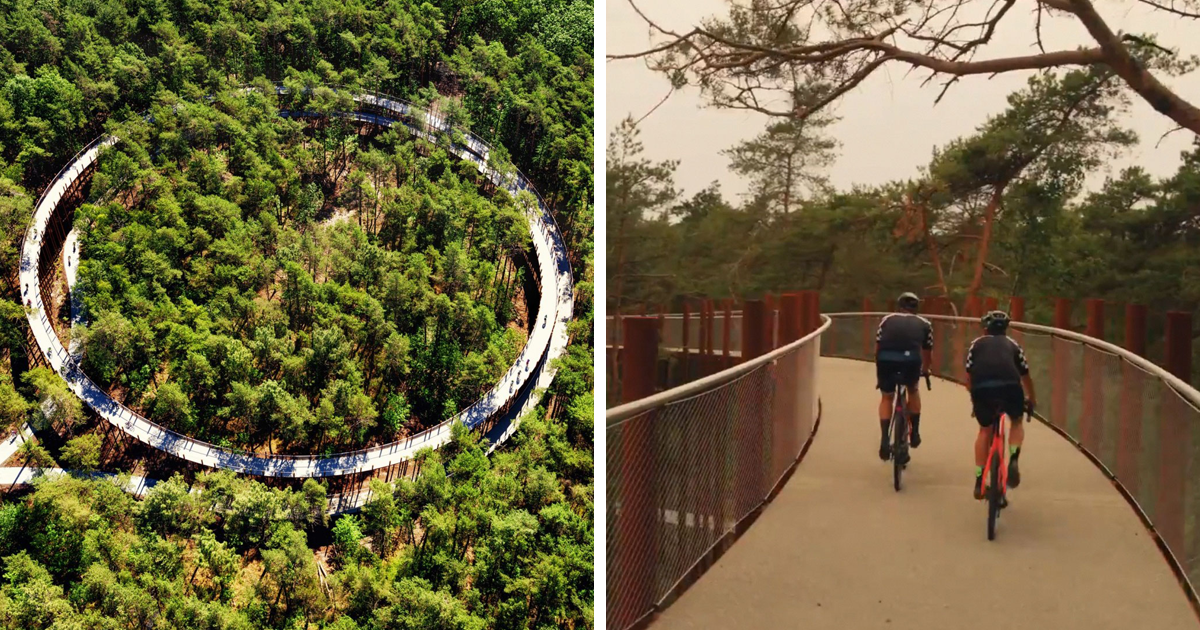 In Belgium, Cyclists Can Now Ride On This 765-Yard-Long Circular Path Suspended 32 Feet In The Air Between Hundreds Of Trees