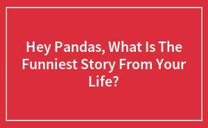 Hey Pandas, What Is The Funniest Story From Your Life?