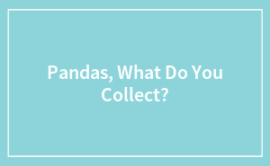 Pandas, What Do You Collect?