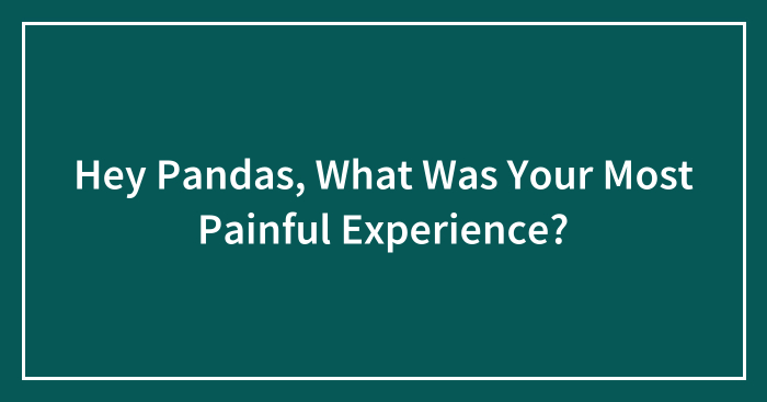 Hey Pandas, What Was Your Most Painful Experience? (Closed)